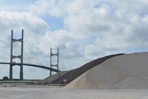 Dry bulk cargo